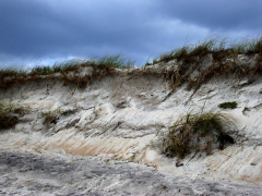 Topsail Island: After a Storm